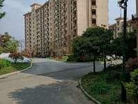 滨江郡,南站旁,洋房造型,可投资,房东急售