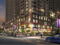 宝龙华庭,七中学区,精装修公寓,房东急售,看中可小刀