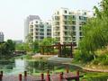 襄城明珠实景图
