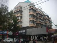 湖东中路67号 外国语学校对面 中装两室 满2年 楼层好 价格低 看房方便