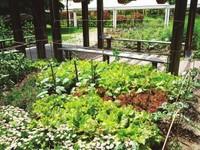 同济花园简装好房出售,性价比高,拎包入住!