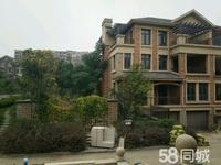 海外海名仕苑独栋别墅568平外加300可扩到400平的院子。房型任意更改。