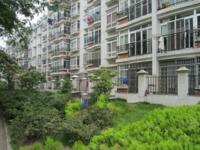 钢城花园 多层四楼 满五年 唯一 家具家电齐全 拎包入住 双学区
