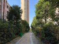 花园洋房带电梯,满三年送车位,户型方正,实用面积180多平。