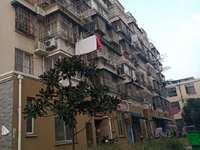 晨光花园 1楼 有架空层 环境优美,绿化面积覆盖高,干净整洁