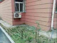 菊花园带院子大三房精装拎包入住满五年诚意购买价格可议