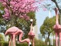 信达·铂悦公馆实景图