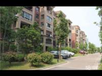 鑫福家园 2 6 大三室 新空毛坯 小区中间 生活方便