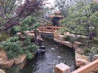 金安佳苑 精装修 拎包入住 多层的4楼 生活便利 满五唯一