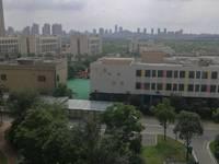 出售绿地臻城3室2厅1卫134平米118万住宅