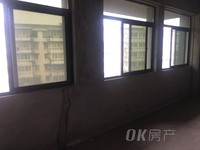 小米公寓 新毛坯 走一手开发商合同 采光不挡 性价比高 合适投资