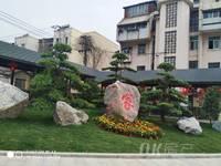 平南四村 一楼带院子三室仅售12万 近菜场近公交车站台生活方便