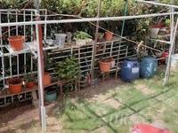春晖一期,20平方的院子,精装修拎包入住!户型南北通透!!