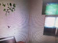 出租沙塘村2室1厅1卫58平米600元/月住宅