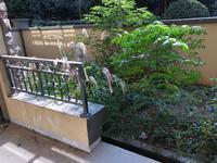 优!伟星蓝山毛坯花园洋房一楼带南院位置优越看房方便