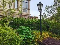 花园洋房佳山墅大三房出售,高端豪宅,市场最低价